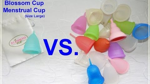 Blossom Cup vs Various Menstrual Cups - Comparison